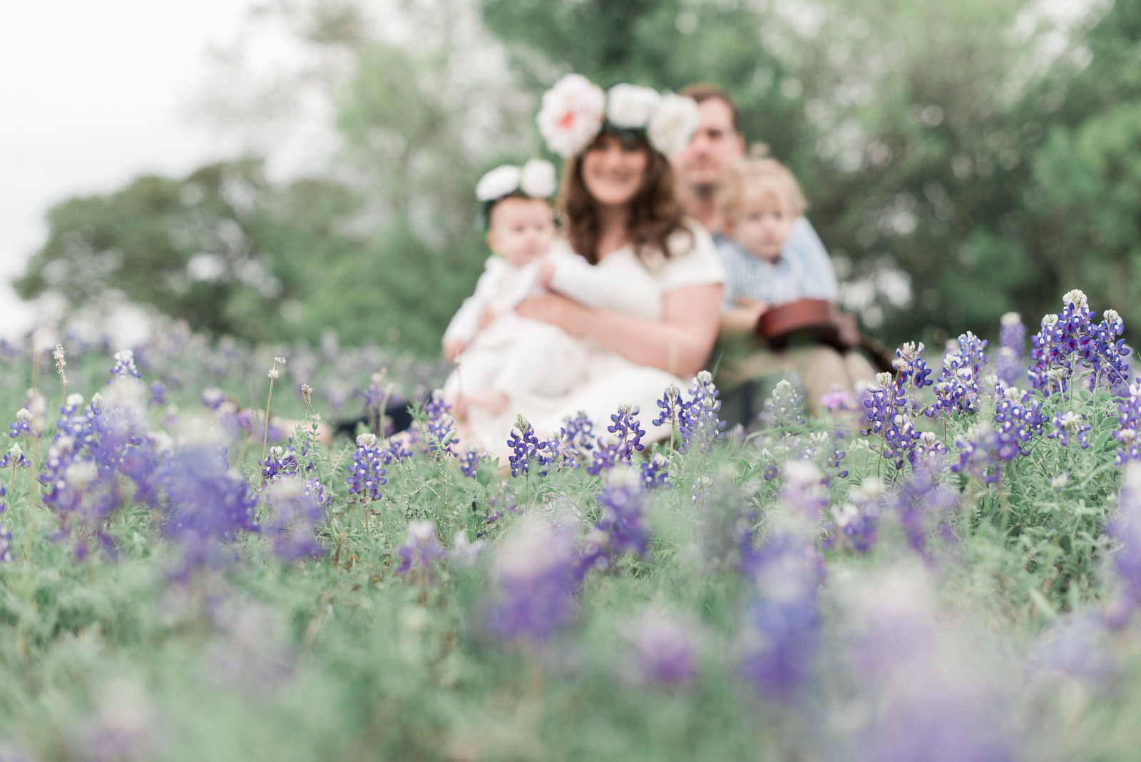Rememory Photography - Surface Bluebonnets-3