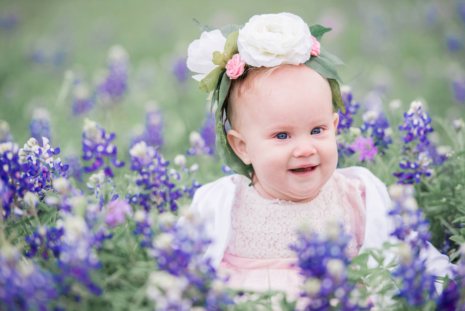Rememory Photography - Surface Bluebonnets-9